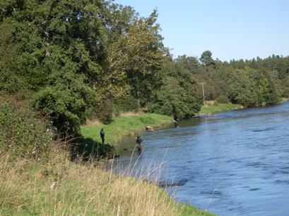 River Spey, Grantown on Spey